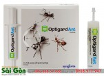 Địa chỉ mua thuốc diệt kiến ở TPHCM uy tín và chất lượng