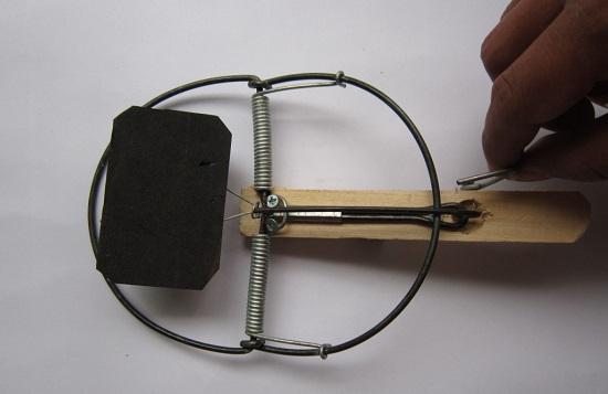 Cách sử dụng bẫy dính chuột hình chữ nhật